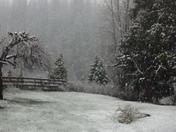Snow in Greenville