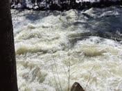 Warner River @Davisville