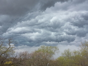 Jadyn and Jace's gust front