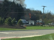 Fire in cranberry