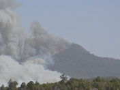 Signal Fire - North of Silver City