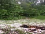 Hail in Drumore, Pa