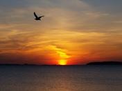 Sunrise Wollaston Beach 06/02/2014