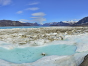 Arctic Oasis