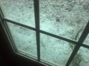 Hail pics