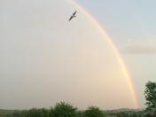 rainbow with Alexander's band