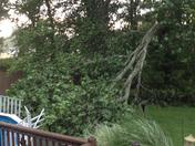 Storm in Greene County
