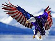U.S.A.  for ever