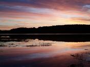Sunrise Weymouth Back River