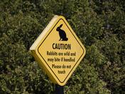 No wildlife please
