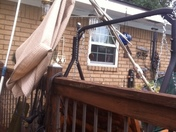 my wife thinks I can fix the umbrella!