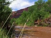 Sand Laden Jemez River
