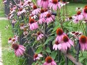 Floral rod iron