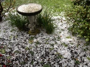 Marble size hail in Weymouth