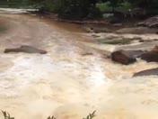 Kayak on Falls Park rapids