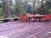 Hail in Homewood