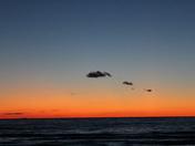 A bright orange sky during sunset.