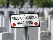 Field of Honour