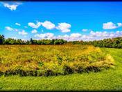 Sky And Prairie
