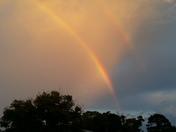 Stuart rainbow