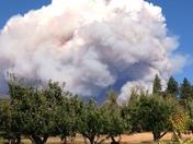 pollock pines fire