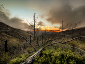 Los Padres National Forest - Alamar Saddle Camp - Dick Smith Wilderness