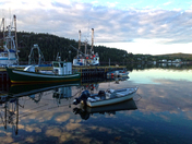 Evening in Conception Harbour