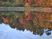 Fall Color in Crandon WI