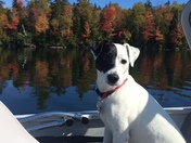 Toby on a boat at Maidstone Lake, northeast kingdom of Vermont