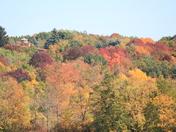 Fall Colors/Pike Lake, Hartford, Wisconsin