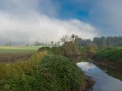 Fog lifting up in Fraser valley