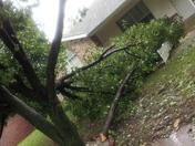 Storm Oct 2nd