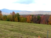 Fall in the Whit Mts.