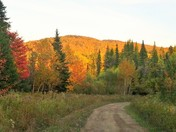 ATV trail in the fall