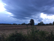 cool clouds moving in