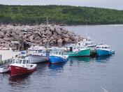 Seaside Harbour