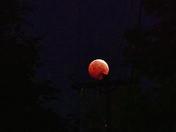 """Blood Moon"" Lunar Eclipse"