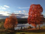Fall foliage on Burns Pond