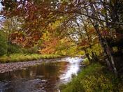 Greens Brook