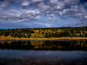 Fall Foliage at San Gregorio Lake, NM