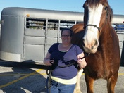 Me and Mark the Clydesdale Horse