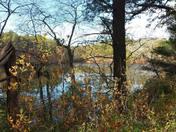 Morey Pond - Ship Pond Road Plymouth MA 10-21-2014