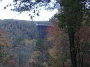 Fall in the New River Gorge in West Virginia