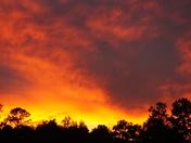 Covington Sunset