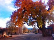 Cerillos New Mexico in the Fall