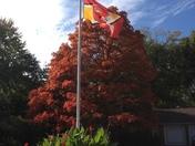 Fall/Chiefs photo