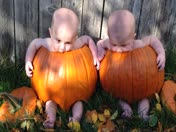 Our Lil' Pumpkins