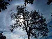 Afternoon Sky...10/30/14