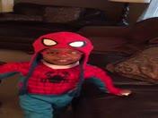 Spider-Nick
