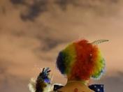 Skyward Clown